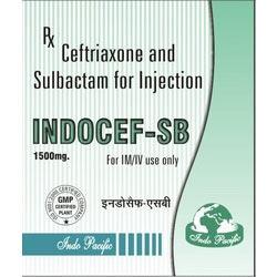 Indocef-SB