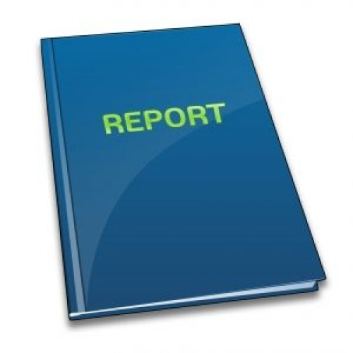 Project Report Preparation Services
