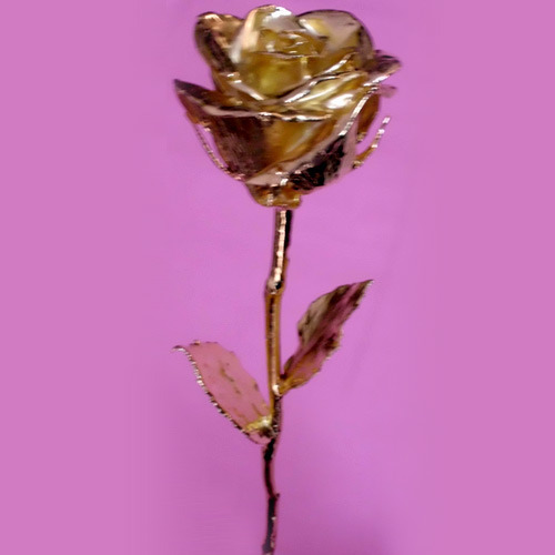 Gold Plated/Gold Dipped Roses 17 Inches
