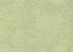 Lime Green Banana Fiber With Lots Of Fiber For Lampshades