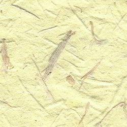 Natural Bagasse Paper