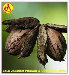 Pecan Nut Carrier Oil