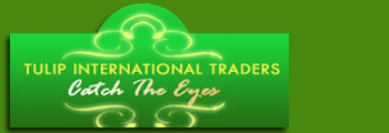 Tulip International Traders