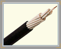 Auxiliary Cables (600/1000 V)