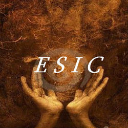 ESIC Consultancy Services