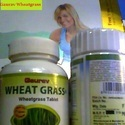 Wheatgrass Powder/tablets