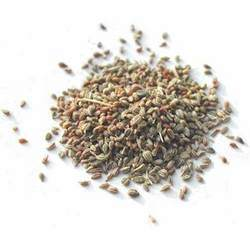 Ajwain Seeds (Bishop Weed)