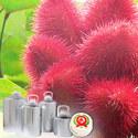 Anatto Extract 1% Bixin