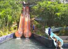 Water Rides Services