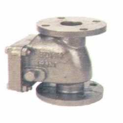 Cast Iron Reflux Valves With Gm Parts