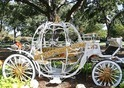 New Model Cinderella Carriage
