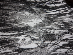 Split Forest Foil
