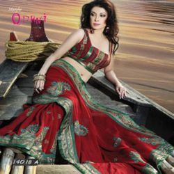Winsome Paisley Design Motifs Sari