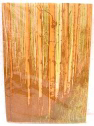 Old Look Nature Theme Handmade Paper Journal