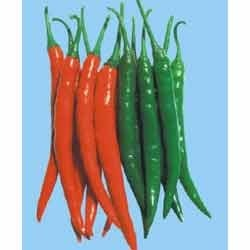 Hot Pepper Hybrid Seeds