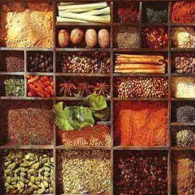 Herbal extracts raw herbal wholesale trader from delhi
