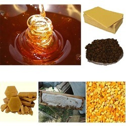 Honey & Honey Bee Products