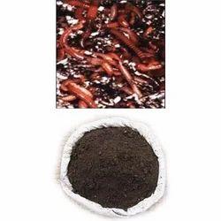 Earthworm & Vermicompost