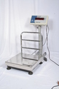 Electronics Platform Weighing Scale