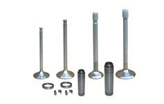 Head Valves, Guides And Seat Inserts