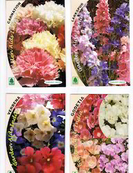 Exclusive Flower Seed Packets for Gardening
