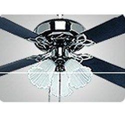 Neptune Ceiling Fan