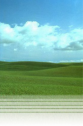 Land Sales Service