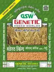 Sortex Clean Wheat Sorath-King (Export Quality)