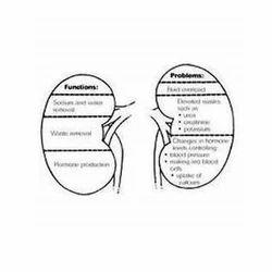 Alternative Ayurvedic Kidney Failure