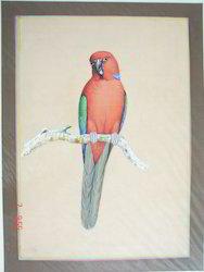 Miniature Painting Birds