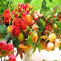 Fresh Garden Flower