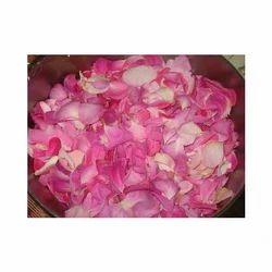Bois - De - Rose Oil