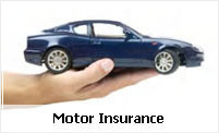 Motor Insurance Services
