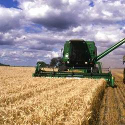 Agricultural Lands And Farm Lands