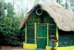 Adventure Cottage