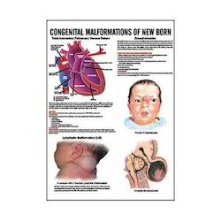 INC15 - Congenital Malformation Of New Born