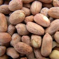 Peanut Salt