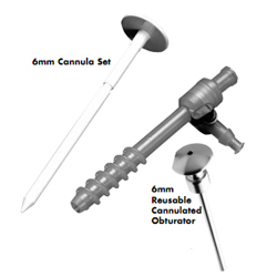 Disposable Cannula Set