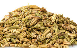 Fennel Seed, Pack Size: 25 Kg