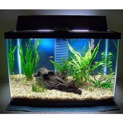 Fish Tanks View Specifications Details Of Fish Tanks By Boyu