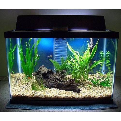 View Specifications Details: View Specifications & Details Of Fish Tanks