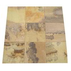 Fossil Mint Sandstone, for Countertops, Packaging Type: Wooden Crates