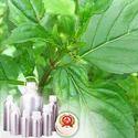Peppermint Oil De-Mentholised Crude