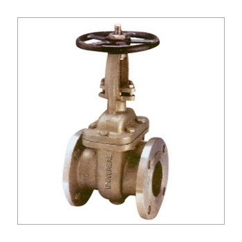 Bdk valves bdk globe valves manufacturer from new delhi bdk gate valves ccuart Images