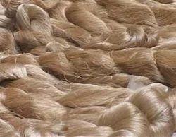 Conifer Dyed Muga Silk Yarns