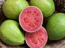 Fruits-Guava