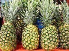 Fruits-Pineapple