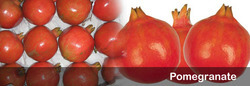 Agriculture Products-Pomegranate