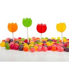 e1dec4c90f44 Alliance Organics LLP - Exporter of Synthetic Food Colors   Solvent ...