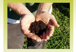 Grass Growing/ Erosion Control